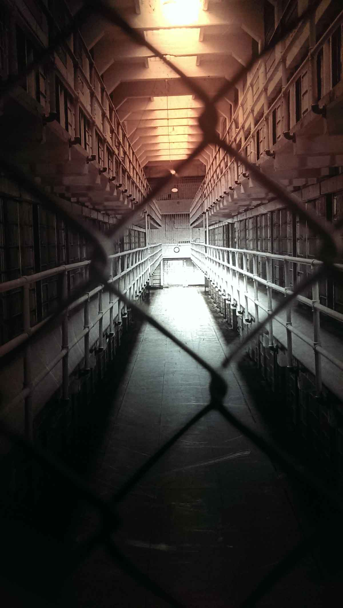View of the cells